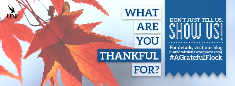 GratefulFlock